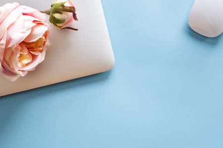 Silver laptop and artificial roses on pastel blue background. Mockup. Office concept.