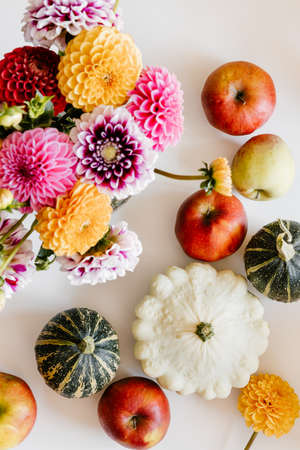 Dahlia flowers, apples, pattypan and squashes on white background.