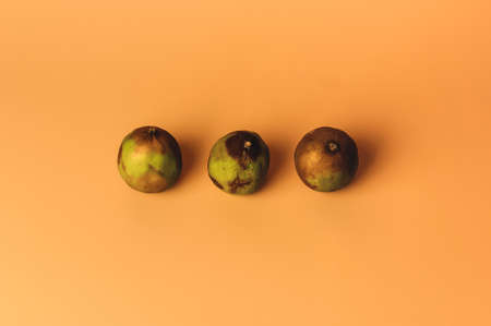 The concept of ugly fruits and citrus fruits. Three limes have soured and dried up. Mold on citrus. Copy space.