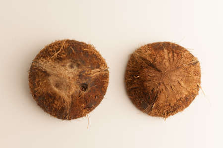 two halves of coconut shell on a white background, isolate. Future food bowls zero waste. Environmentally friendly material for dishes. Copy space.