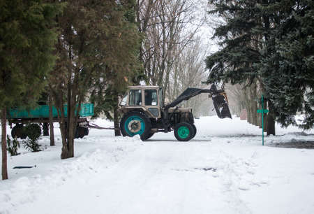 tractor with a trailer in the winter in the botanical garden clears the road from snow and branches. Template for design. Copy space. Zdjęcie Seryjne