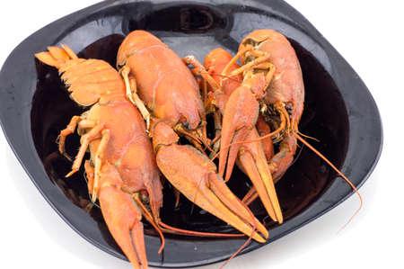 boiled crayfish closeup on white background