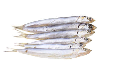 engraulis: European salted anchovies isolated on white background