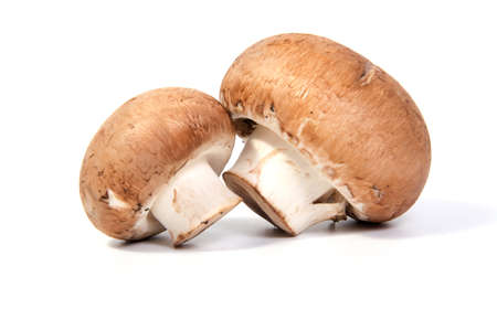 Set Champignon mushroom isolated on white background.