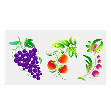 grapes, strawberries and berries are painted in an old ethnic style. vector image