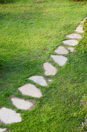 Stone path in garden among green lawn. Grass growing up between and around stones. Summer day Imagens
