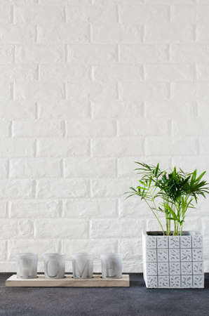 Interior candlesticks with the inscription home and potted plant Chamaedorea elegans near white brick wall.