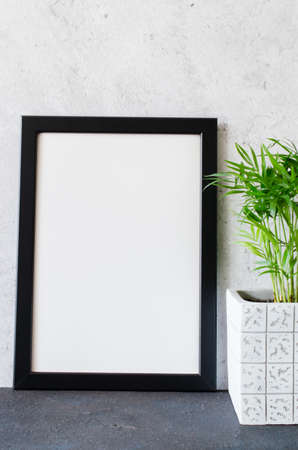 Black poster or photo frame and beautiful plant in concrete pot. Scandinavian style room interior. Blank Mock up. Copy space.