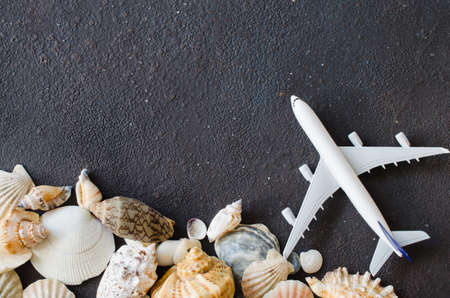 Summer travel concept. Decorative airplane and different seashells on dark concrete background. Top view, flat lay. Copy Space. Mock up.