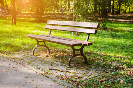 Bench in city park in autumn. Autumn Landscape. Beautiful autumn park at sunny weather.