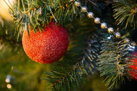 single red Christmas ball hanging on Christmas tree, as the substrate
