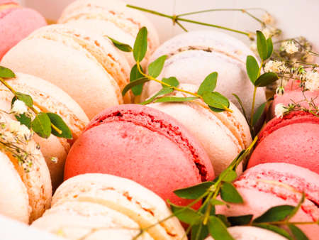 Colorful macaroons, Colorful french dessert, traditional french colorful macarons in a rows in a box.