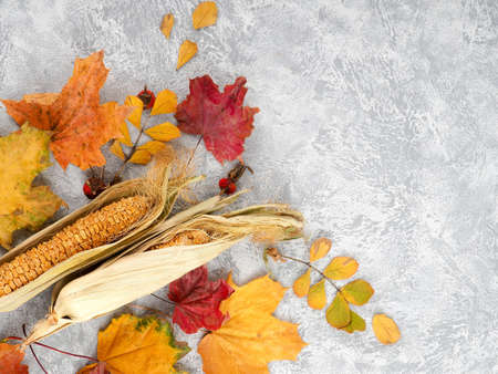 Autumn leaves over black background with copy space, Abstract background of autumn leaves Stock Photo