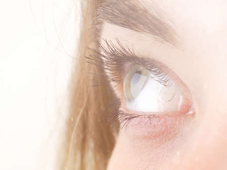 part of a womans body, the eyes, the concept of the gaze, pupils, eyelashes.