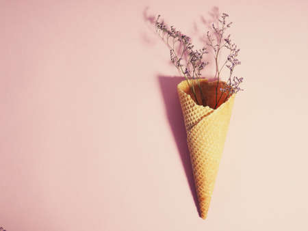 Bouquet of dried flowers in a waffle cup from ice cream, cone, on a pink background, minimalism. 版權商用圖片