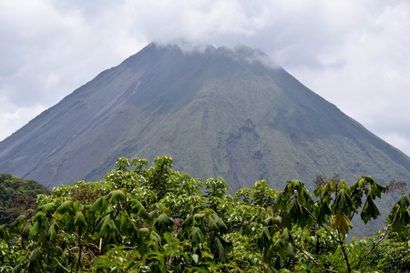 Arenal Volcano, shrouded in clouds, with lush plants in the foreground, in Costa Rica