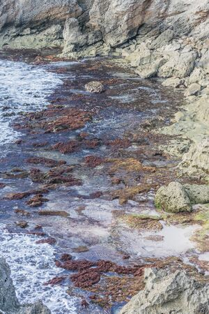 Ocean water rushing into colorful  tide pools Banco de Imagens