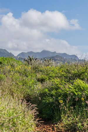 Portion of The Heritage Hiking Trail with a cloudy blue sky and mountains in the background, on Kauai, Hawaii