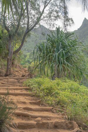 カウアイ島カララウ ハイキング トレイルに沿って上がっての手順