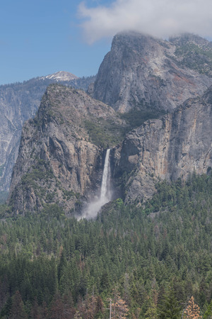Bridalveil falls, pine forest floor, and mountains, in Yosemite National Park Stock Photo