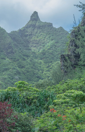 Lush landscape, pointy mountain top, on a cloudy day, at the Limahuli Garden and Preserve-National Botanical Garden, Haena, Halelea, Kauai, Hawaii