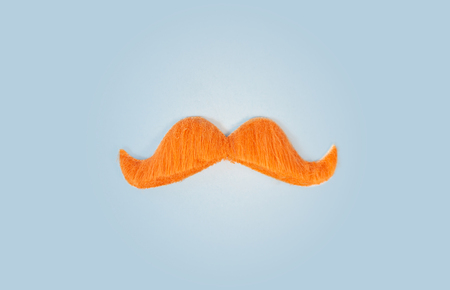top view ginger orange color mustaches