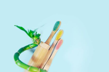Flat lay composition with bamboo toothbrush and space for text