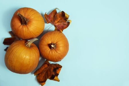 pumpkin arrangement. flat lay autumn wallpaper
