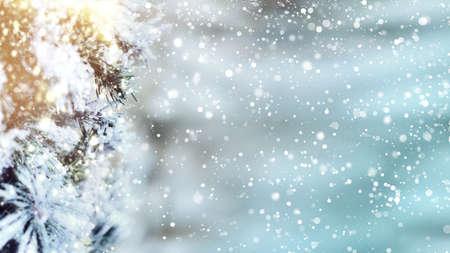 Christmas tree background snow flakes 免版税图像