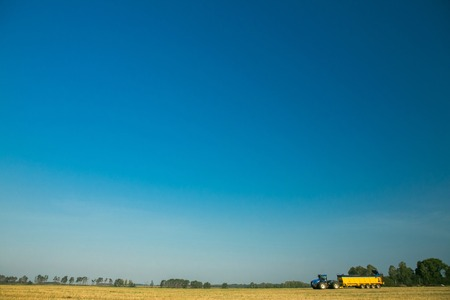 the tractor fertilizes the field with manure. A large trailer. Sowing. Agroindustry.Pole before sowing. Against the sky. yellow tractor. Blue tractor Archivio Fotografico