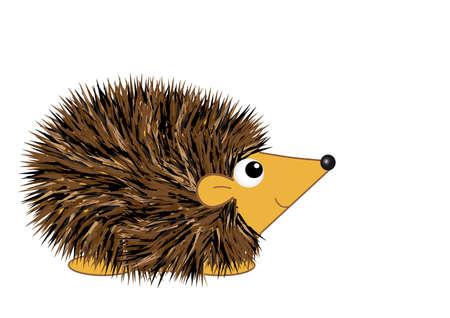 hedgehog: Cartoon Hedgehog