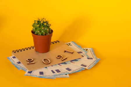 Diary with Euro banknotes inside and 2021 made of wooden parts and cactus on top on a yellow background. Creative concept. Business, planning for the new year