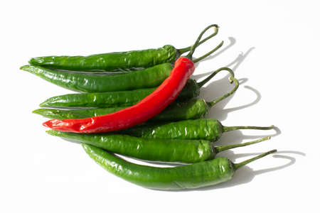 colorful hot chili pepper on a white background