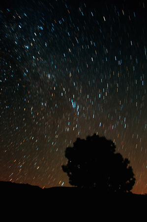 gazing: Star trails of the Perseid Meteor shower  Descanso, CA  Stock Photo