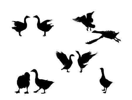 flying goose goose vector silhouette collection for designers