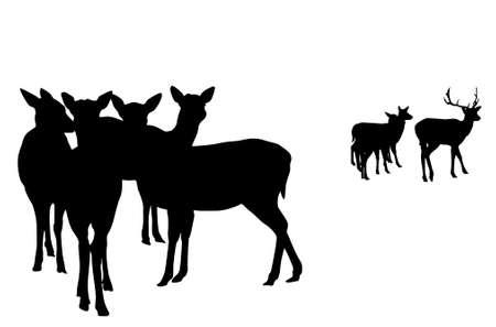 ruminant: deer  herd vector silhouette     illustration