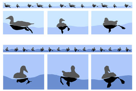 floating ducks motifs including seamless linear version   Vector