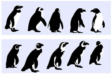 pinguino: ping�inos, vector de recogida para los dise�adores