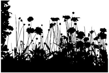 siluetas: black floral background over white