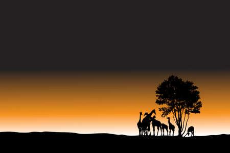 african sunrise landscape, vector illustration Stock Vector - 3439604