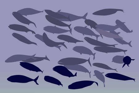 shoal of fish, vector illustration