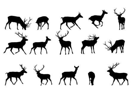 venado: Red Deer silueta, vector de recogida