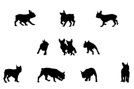 gait: french bulldog playing, vector silhouettes