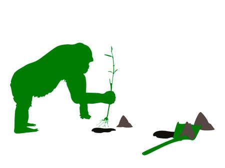 vector illustration of gorilla planting trees