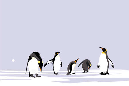 iciness: Emperor Penguins, easy editable vector collection Illustration
