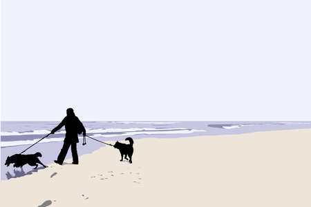 vector illustration of man walking his dogs  Vector