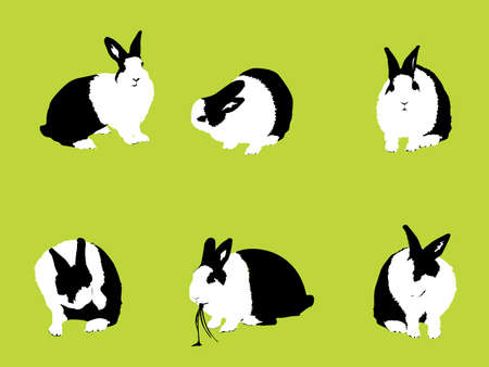 fleecy: Easter Bunny, vector collection for designers