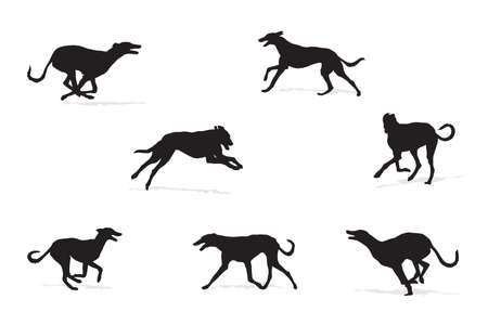 dog running: windhound running silhouettes collection for designers Illustration