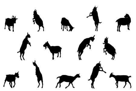 goat silhouettes, collection for designers Stock Vector - 4737733