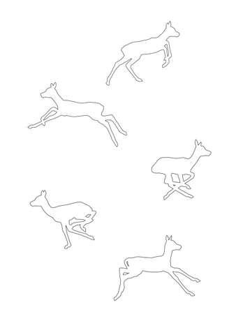 Blackbuck antelope fawn running collection Vector